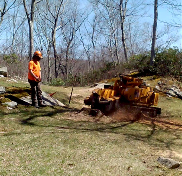 Fairfield Land Clearing, Yard Expansion And Tree